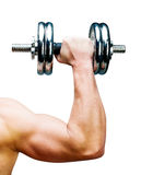 Muscular man Royalty Free Stock Images