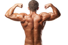 Muscular man. Back view of a muscular man posing on white background Stock Image