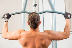 Muscular man with a bare back Royalty Free Stock Photography