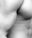 Muscular Man - Bicep. Abstract view of Bicep and torso of a muscular man Royalty Free Stock Image