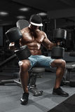 Muscular man with big dumbbells working out in gym, doing exercise Stock Photography