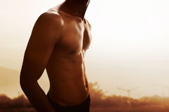 Muscular man body. On outdoor Royalty Free Stock Image