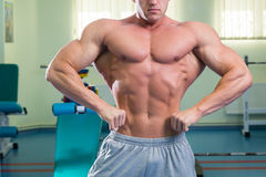 Free Muscular Man Bodybuilder Stock Photography - 53724482
