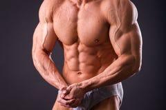 Muscular man bodybuilder Stock Photography