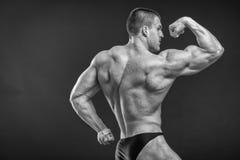 Muscular man bodybuilder Royalty Free Stock Photos