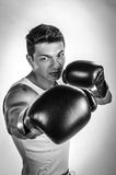 Muscular man boxing Royalty Free Stock Photography