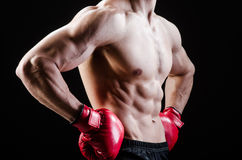 Muscular man in boxing concept Royalty Free Stock Photo