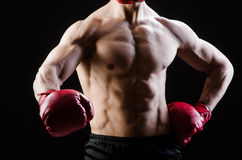 Muscular man in boxing concept Stock Photos