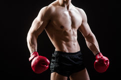 The muscular man in boxing concept Royalty Free Stock Photo