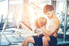 Muscular Man built athlete working out in gym sitting on weightlifting machine and lifting dumbbell royalty free stock images