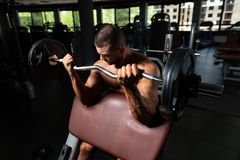 Athlete Working Out Biceps In A Gym. Muscular Man Doing Heavy Weight Exercise For Biceps With Barbell In Gym royalty free stock photo