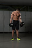 Muscular Man Doing Heavy Weight Exercise For Biceps Royalty Free Stock Images