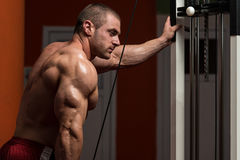 Muscular Man Doing Heavy Weight Exercise For Triceps Royalty Free Stock Photos