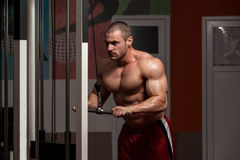 Muscular Man Doing Heavy Weight Exercise For Triceps Stock Photos