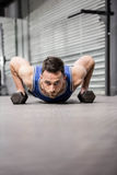 Muscular man doing push up with dumbbells. Muscular man doing push up wioth dumbbells at the crossfit gym Stock Images