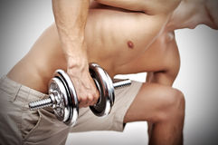 Muscular  man with dumbbell Stock Image
