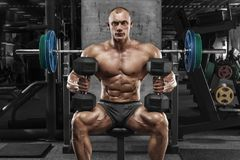 Muscular man with dumbbells in gym, bodybuilder. Strong male naked torso abs, working out Royalty Free Stock Photography
