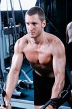 Muscular man exercise in a gym Stock Image