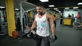 Muscular man exercises with dumbbells. Sportsman builds up muscles with dumbbells and demonstrates health and strength of his arms in fitness club. Two sexy stock footage