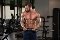 Muscular Man Exercising Biceps With Barbell Stock Images