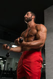 Muscular Man Exercising Biceps On Cable Machine Stock Image