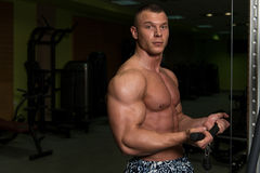 Muscular Man Exercising Biceps On Cable Machine Stock Photography