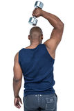 Muscular man exercising with dumbbell Stock Photo