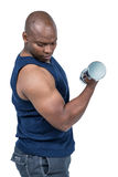 Muscular man exercising with dumbbell Royalty Free Stock Image