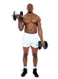 Muscular man exercising with dumbbells Royalty Free Stock Image