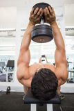 Muscular man exercising with dumbbells in gym Royalty Free Stock Photo