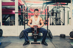 Muscular man exercising in the gym Stock Image