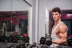 Muscular man exercising in the gym Stock Photography