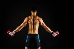Muscular man exercising royalty free stock photography