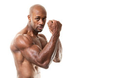 Muscular Man Fists Up Royalty Free Stock Image