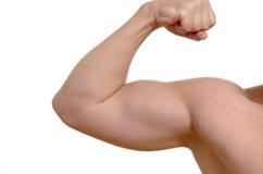 Muscular man flexing his arm Royalty Free Stock Photos