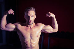 Muscular man flexing his biceps Royalty Free Stock Photo