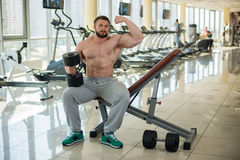 Muscular man in gym. royalty free stock images