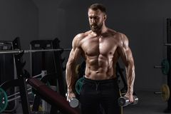 Muscular man in gym with dumbbells. Strong male naked torso abs, workout.  royalty free stock images