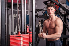 Muscular man in the gym exercising Royalty Free Stock Photos