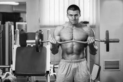Muscular man in the gym performing the exercise Stock Images