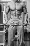Muscular man in the gym performing the exercise Stock Photography