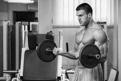 Muscular man in the gym performing the exercise Royalty Free Stock Images