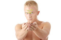Muscular man holding small plant Stock Photo