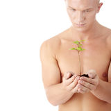 Muscular man holding small plant Stock Image