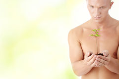Muscular man holding small plant Royalty Free Stock Photo