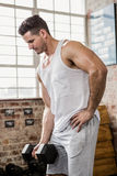 Muscular man lifting dumbbell Stock Photo