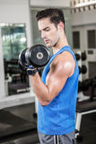 Muscular man lifting dumbbell Royalty Free Stock Image