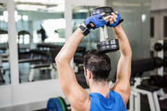 Muscular man lifting dumbbell while sitting on bench Royalty Free Stock Photos