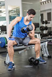 Muscular man lifting dumbbell while sitting on bench Royalty Free Stock Image