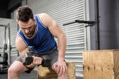 Muscular man lifting dumbbell on wooden block Royalty Free Stock Photos